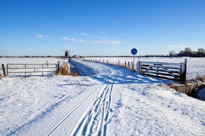 rural-cycling-path-Fryslan